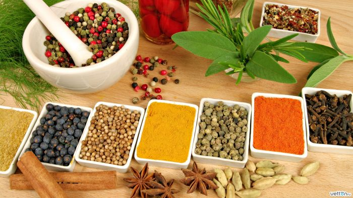 Ayurvedska medicina - kada i šta jesti