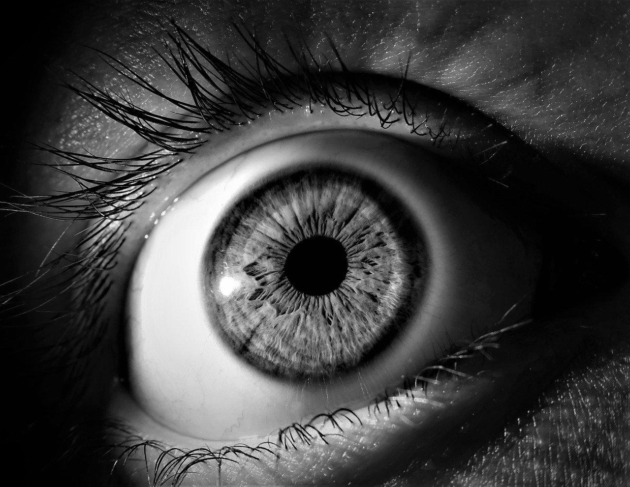 u oku